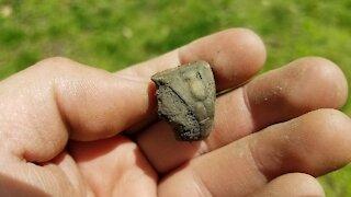 Metal Detecting - Digging old Rings