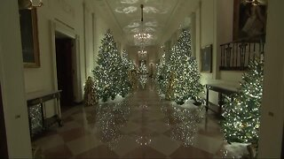 Meridian woman helps decorate The White House