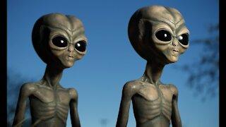 Alien Grey Mystery Solved Aliens Are Demons HD