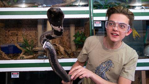 Venomous Snakes Helped Save My Life | BEAST BUDDIES