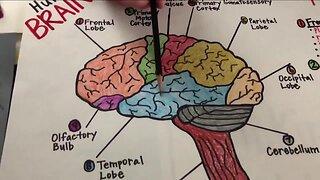 School House 7 metacognition