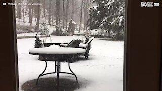 Time-lapse durante una bufera mostra l'accumularsi della neve