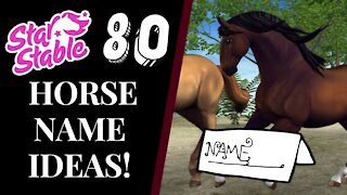 80+ STAR STABLE HORSE NAME IDEAS! 2021 Star Stable Quinn Ponylord
