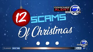12 scams of Christmas: Warning about puppy scams