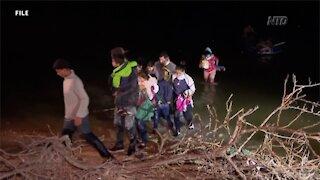 Texas Governor Explains How Smugglers Use Children