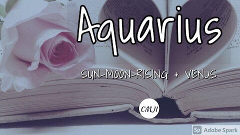 """AQUARIUS """"THE SOULMATE"""""""