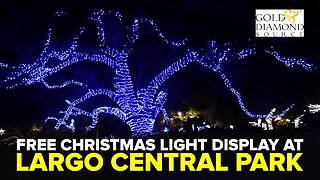 Free Christmas light display at Largo Central Park | Taste and See Tampa Bay