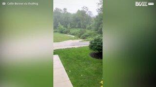 Relâmpago cai assustadoramente perto durante tempestade