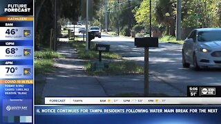 Seminole Heights neighbors protesting new housing complex
