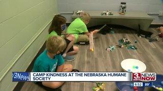 Camp Kindness at Nebraska Humane Society
