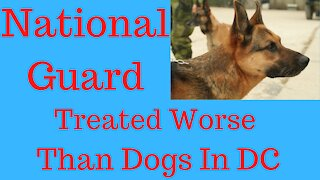 National Guard Treated Worse Than Dogs