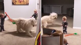Twin boys thrilled as their doggy gets the zoomies
