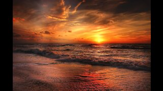 The Beauty of Beach and Nature at Sunset