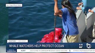San Diego whale watchers help protect ocean