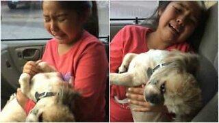 Jenta blir helt fortvilet når hun ser hvordan hunden har blitt klippet