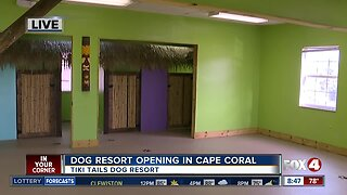 Tiki Tails Dog Resort opening in Cape Coral 8:30 a.m.