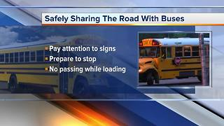 Safely sharing the road with school buses