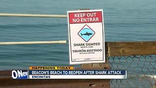 Encinitas beach reopening after weekend shark attack