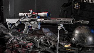 S&W M&P AR10 #109