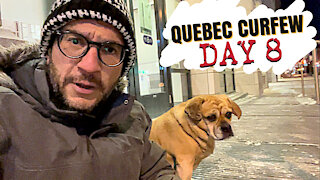Quebec Curfew Day 8 Update: From Bad to Worse
