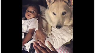 Dog makes it clear baby is new best friend