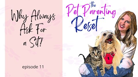 Why Are We Asking Our Dogs To Sit So Much? | The Pet Parenting Reset, episode 11