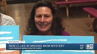 New surveillance video released into Julie Concialdi's disappearance