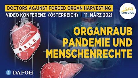 """""""Organraub, Pandemie und Menschenrechte"""": Widersprüche entlarven das KP-Regime - Mein Redebeitrag"""