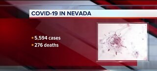 Local COVID-19 numbers in Nevada | May 6