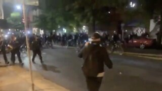 Seattle Officer On Leave After Video Shows Walking Bike Over Protester