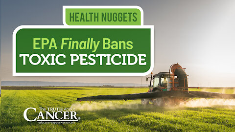 The Truth About Cancer Presents: Health Nuggets - EPA Finally Bans Toxic Pesticide