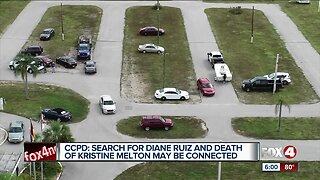 Diane Ruiz person of interest new information