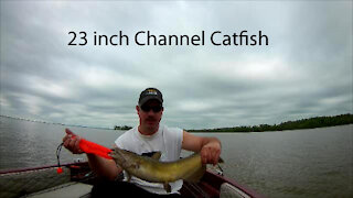 Chesapeake Bay Tournament Fishing out of Anchor Marina