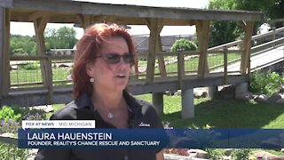 Working in insurance, she felt a calling to help horses get a second chance at life. A year later, she opened up Reality's Chance, a horse sanctuary in Pleasant Lake.