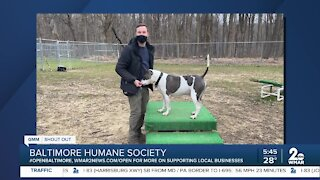 Baltimore Humane Society is open!