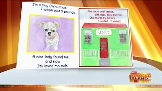 A New Children's Book Bringing Awareness to Homeless Pets