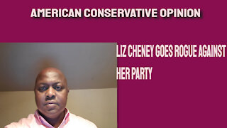 Liz Cheney goes rogue against her party