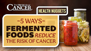 The Truth About Cancer Presents: Health Nuggets - 5 Ways Fermented Foods Reduce The Risk of Cancer