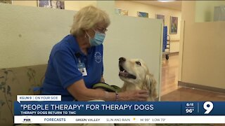Therapy dogs get warm welcome back at Tucson Medical Center