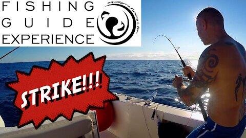 FISHING BONITO🛥DOUBLE STRIKE! AQUATERRA FISHING GUIDE EXPERIENCE