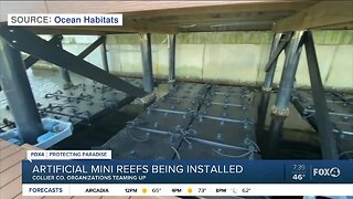 Mini reef installations in Collier County