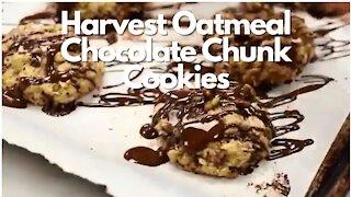 Harvest Oatmeal Chocolate Chunk Cookies - Recipe