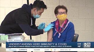 Understanding herd immunity and COVID-19