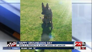 Happy Ground-Dog Day from BPD