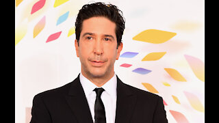 David Schwimmer was done with TV before joining cast of Friends