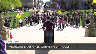 Michigan bans open carry of firearms in polling places on Election Day