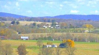 Healing with farmlands