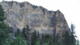 NV Energy says winds on Mount Charleston caused outage