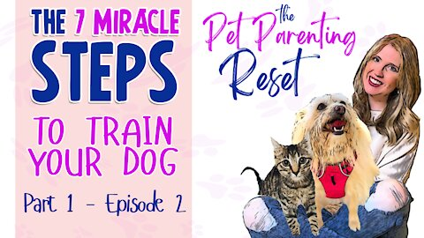 The 7 Miracle Steps To Train your Dog (Part 1) - The Pet Parenting Reset podcast episode 2