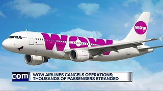 Wow Airlines cancels operations: Thousands of passengers stranded
